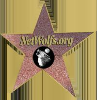 netwolfs.org